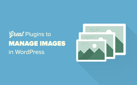 22 Great WordPress Plugins for Managing Images (Updated)